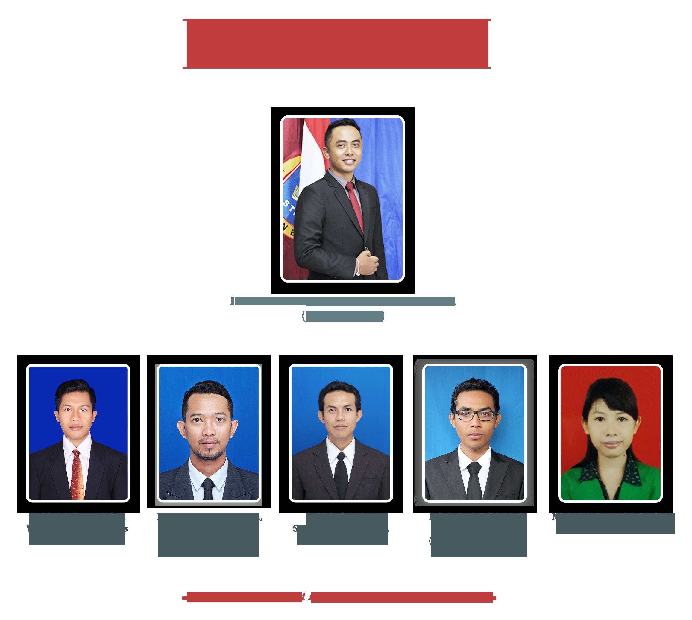 Struktur Organisasi LPPM STMIK STIKOM Indonesia